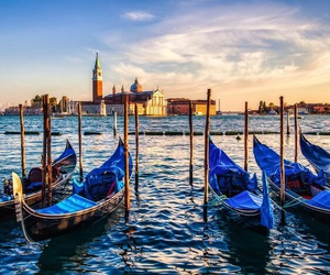 beach, venice, and beautiful image