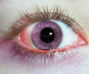 eyes, purple, and pink image
