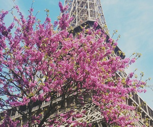 eiffel, paris, and tour eiffel image