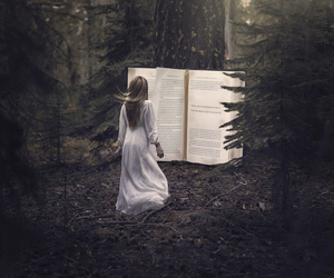 book, forest, and love image