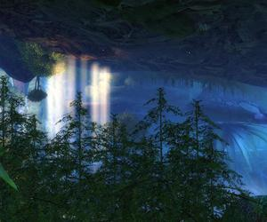 the grove, gw2, and guild wars 2 image
