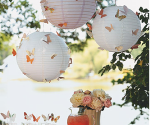 butterfly and wedding image