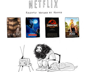 harry potter, netflix, and hagrid image