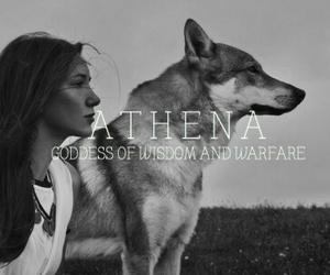 athena, fantasy, and greek mythology image