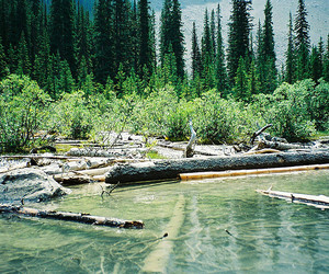 british columbia, canada, and geotagged image