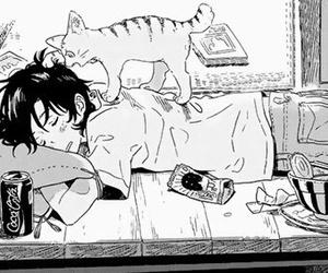 manga, boy, and cat image