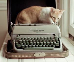 cat, typewriter, and vintage image