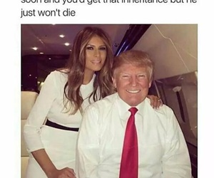 funny and donald trump image