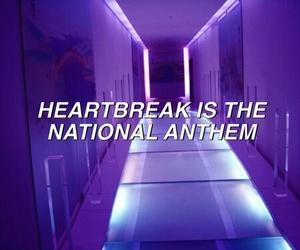 lights and purple image