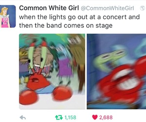 concert, funny, and lol image