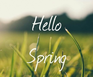 hello, spring, and welcome image