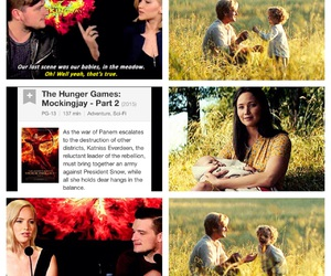 books, Jennifer Lawrence, and the hunger games image