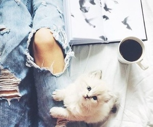 cat, coffee, and jeans image