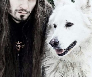 blue eyes, metalhead, and white dog image