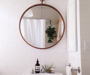 bathroom, mirror, and plants image