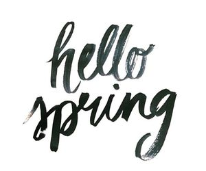 spring, text, and hello spring image