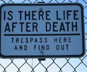 death, life, and funny image