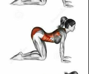 fitness and yoga image