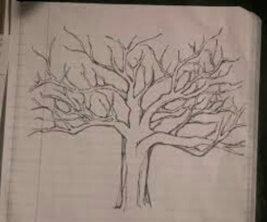 teen wolf, tree, and draw image