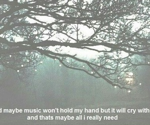 music, cry, and quote image