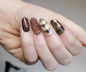 nails, nail polish, and nails polish image