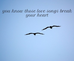 birds, blue, and break image