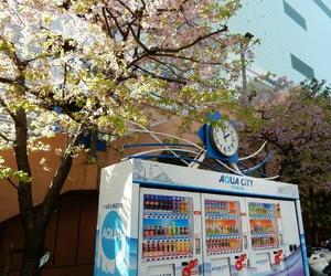 japan, sakura, and vending machine image