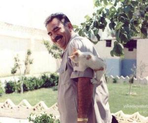 cat, kurdistan, and apo image