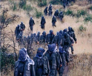 freedom, kurdistan, and gerilla image