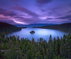 nature, purple, and traveling image
