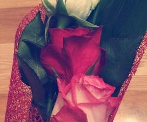 rose, whiterose, and giftformom image