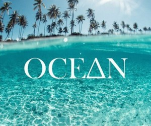 lovely, ocean, and photography image