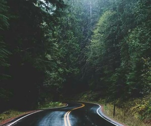 forest, ride, and road image