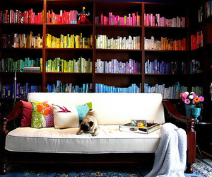 book, rainbow, and library image