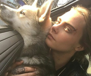 cara delevingne, model, and dog image