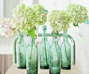 bottles green flower image