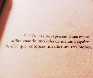 frases, book, and autumn image