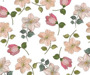 wall paper and flowers. image