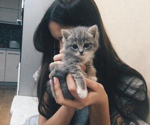 cat, girls, and kitten image