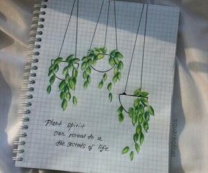 plants, aesthetic, and art image