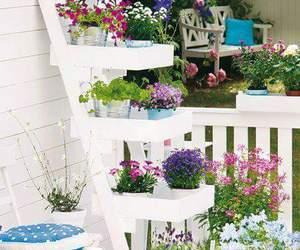 flower, garden, and diy image