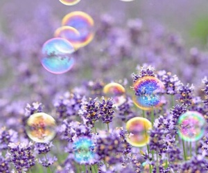 flowers, bubbles, and purple image