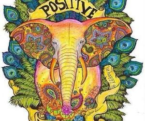 positive, elephant, and vibration image