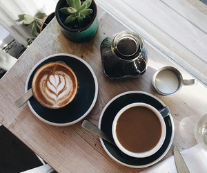 coffee, drink, and plants image