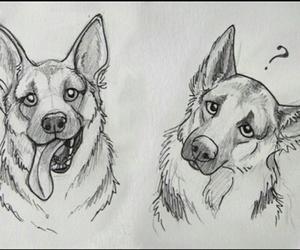 dog and drawing image