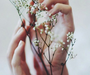 flower and hands image