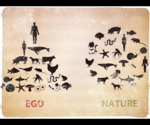 amazing, clever, and ego image