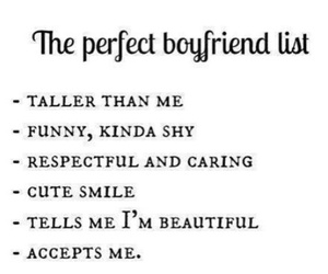 boys, i want, and the perfect boyfriend image