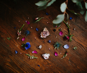 flowers, still life, and wood image