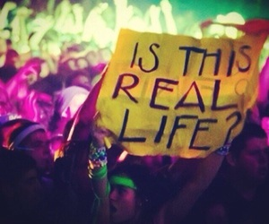 festival, rave, and repeat image